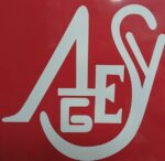 Asesoría Asyges